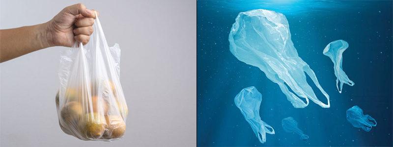 Plastik poşetler Türkiye'de paralı oldu, Avusturya ise tamamen yasaklamaya hazırlanıyor