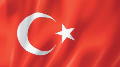 Bild von Büyükelçilik ve Konsolosluklar Avusturya'daki Türk Toplumunun Sorunlarına Ne Zaman Çözüm Üretecek.