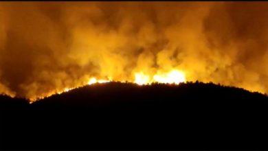 Bild von Yaklaşık 35 Saat Süren Hatay / İskenderun Yangını