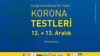 Bild von Aşağı Avusturya'da Toplu Korona Testleri