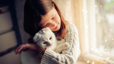 Bild von Tierliebe Tut Der Seele Gut