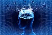 Bild von Ist unser Glück vom GABA-Spiegel im Gehirn abhängig?