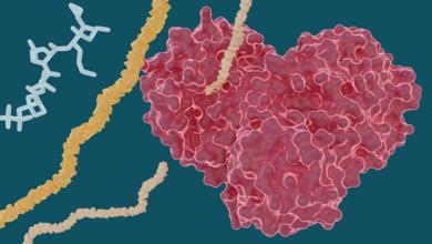 Bild von Pandemi Hepatit Artışına Neden Olabilir!